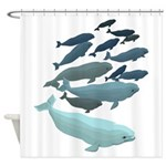 Beluga Whale Art Shower Curtain