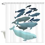 Beluga Whale Art Shower Curtain