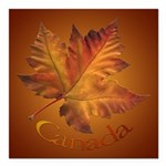 "Canada Maple Leaf Souvenir Square Car Magnet 3"" x"