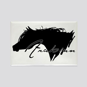 Arabian Horse Rectangle Magnet