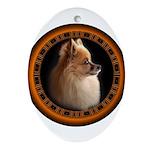 Pomeranian Dog Oval Ornament