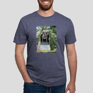 MAILMAN Mens Tri-blend T-Shirt