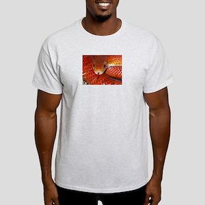 Corn Snake Ash Grey T-Shirt