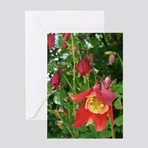 Love Card Pink Columbine