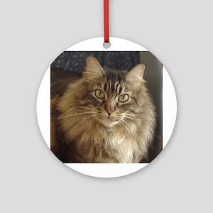 Maine Coon Cat Keepsake (Round)
