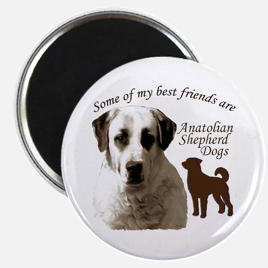 Cute Anatolian shepherd dog Magnet