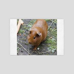 Lovely Guinea pig 2 4' x 6' Rug