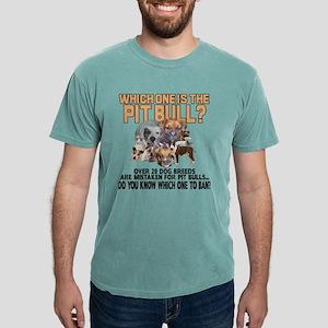PICK ONE Mens Comfort Colors® Shirt