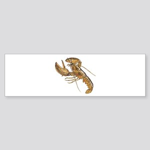 Lobster Bumper Sticker
