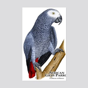 African Gray Parrot Rectangle Sticker