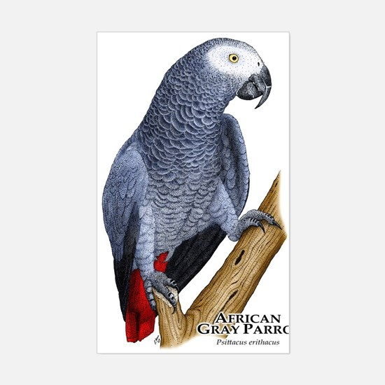 African Gray Parrot Rectangle Decal