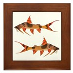 goonch catfish Framed Tile