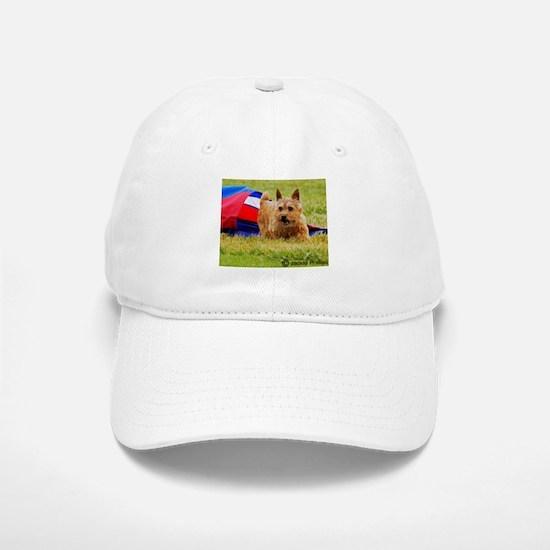 Norwich Terrier Baseball Baseball Cap