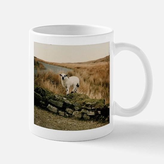 DonegalLamb Mugs