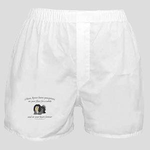 Lhasa Apso Pawprints Boxer Shorts
