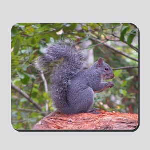 Gray Squirrel Mousepad