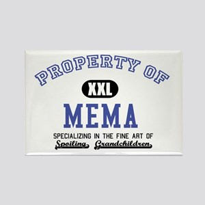 Property of Mema Rectangle Magnet