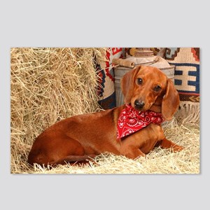 Western Doxie Postcards (Package of 8)