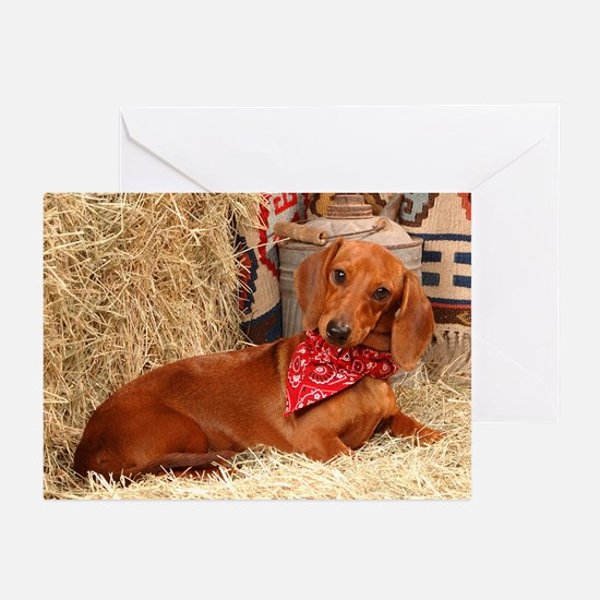 Western Doxie Greeting Cards (Pk of 20)