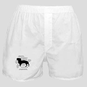 Dachshund Chart Boxer Shorts