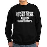 Super Geek University Sweatshirt (dark)