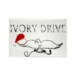 Ivory Drive Rectangle Magnet (10 pack)