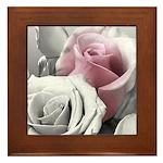 Roses Framed Tile