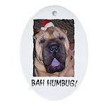 BAH HUMBUG HUMOROUS Ornament (Oval)