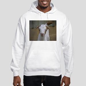 I Love Baby Goats Hooded Sweatshirt