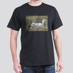 I Love Baby Goats in the Hay Dark T-Shirt