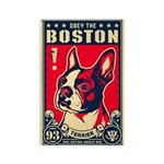 Obey the Boston! USA Magnets (10 pack)