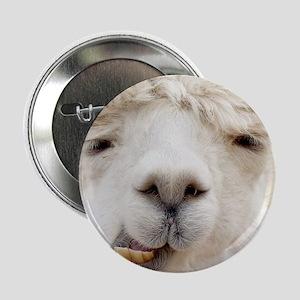 """Funny Alpaca Smile 2.25"""" Button"""