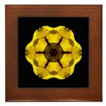 Yellow Pansy I Framed Tile