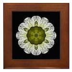 White Petunia IV  Framed Tile