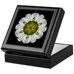 White Petunia IV Keepsake Box