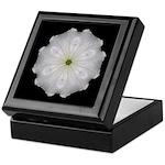 White Petunia II Keepsake Box