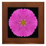 Violet Cosmos I Framed Tile