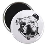 English Bulldog Smiling Magnet