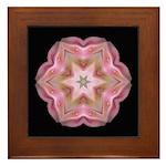 Rhododendron Cunninghams White I Framed Tile