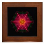 Red and Yellow Daylily IId  Framed Tile
