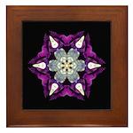 Purple Pansy I Framed Tile
