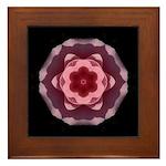 Pink Rose I Framed Tile