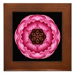 Pink Peony I Framed Tile