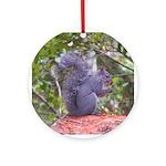 Gray Squirrel Keepsake Ornament