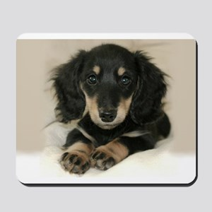 Long Haired Puppy Mousepad