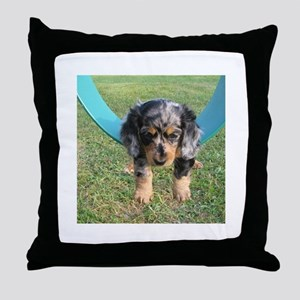 Long Haired Dapple Throw Pillow