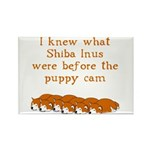 Shiba Puppy Cam Rectangle Magnet (10 pack)