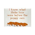 Shiba Puppy Cam Rectangle Magnet