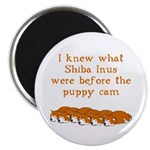 Shiba Puppy Cam Magnet