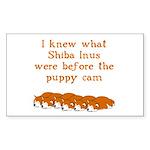 Shiba Puppy Cam Rectangle Sticker 10 pk)